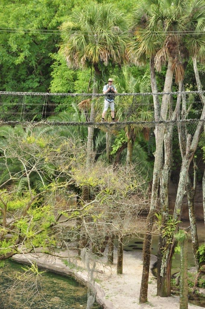 Al over the Rope Bridges