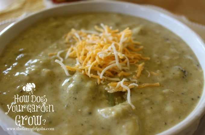Farm Fresh Broccoli Soup - Feature