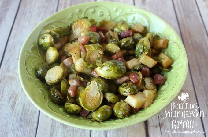 Brussels Sprouts - Feature 2