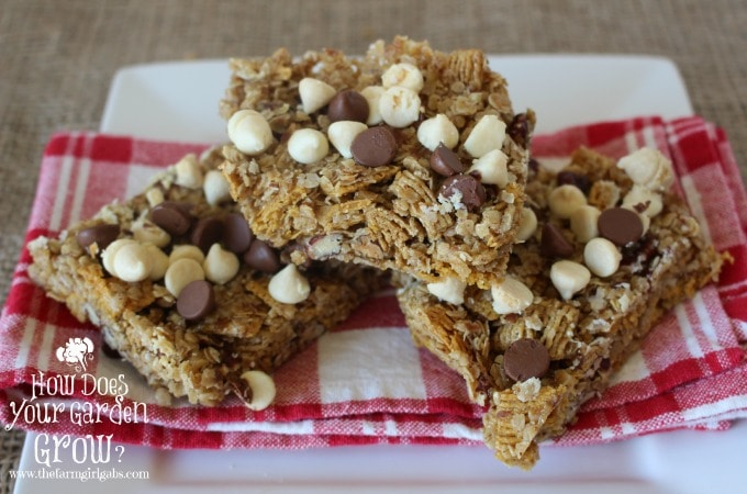 Grab & Go Breakfast Bars - Plated