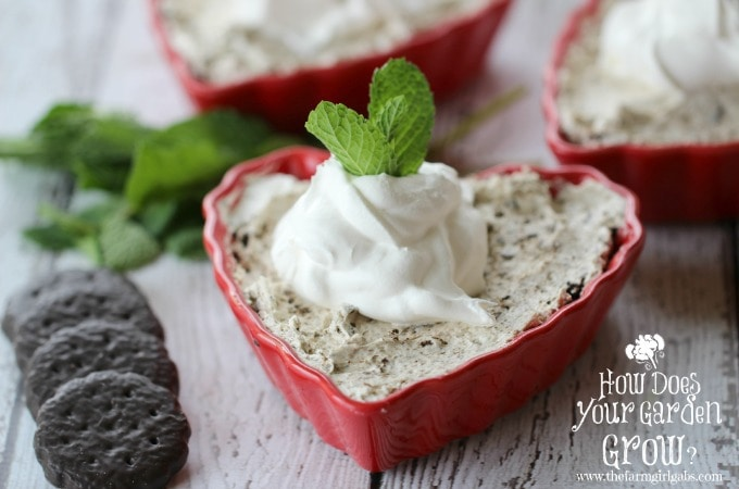 Thin Minty Cheesecake in Heart Ramekins