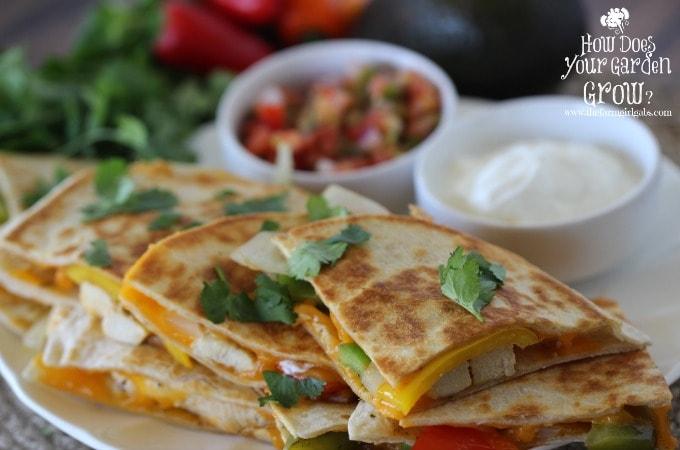 Chicken Fajita Quesadillas - Feature 1