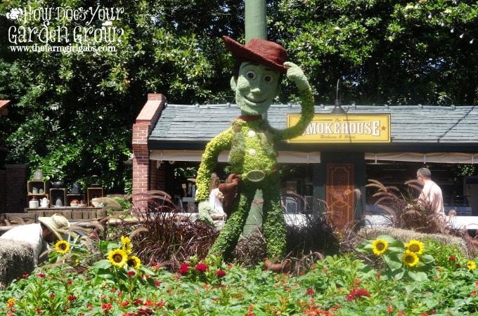 Woody - Epcot