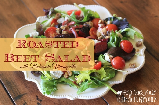 Roasted Beet Salad with Goat Cheese And Balsamic Vinaigrette