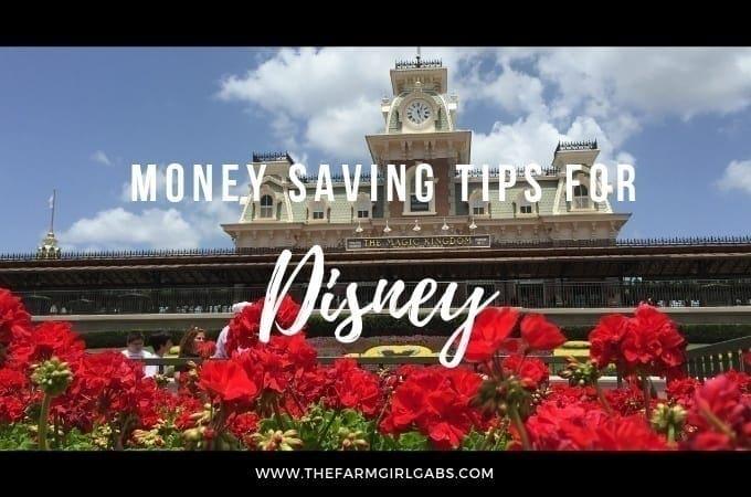 Money Saving Tips For Walt Disney World