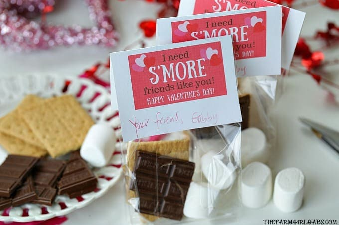 S'Mores Valentine Treat Bags