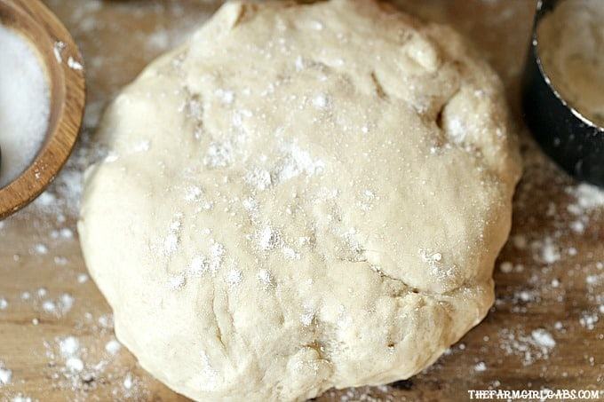 With a few simple ingredients, the Best Pizza Dough recipe is perfect for pizza night in your home!