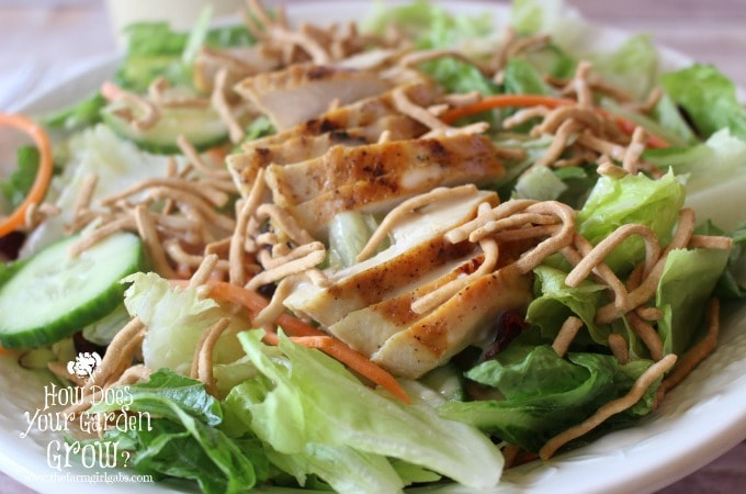 Sesame Chicken Salad with Honey Sesame Dressing