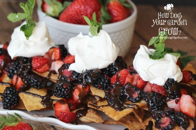 Very Berry Dessert Nachos- Close Shot