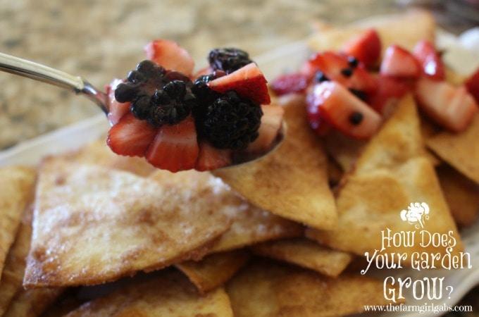 Very Berry Dessert Nachos Spoon