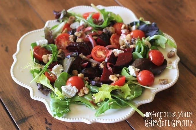 Roasted Beet Salad - Feature 1