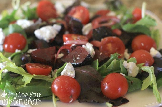 Roasted Beet Salad - Feature 3