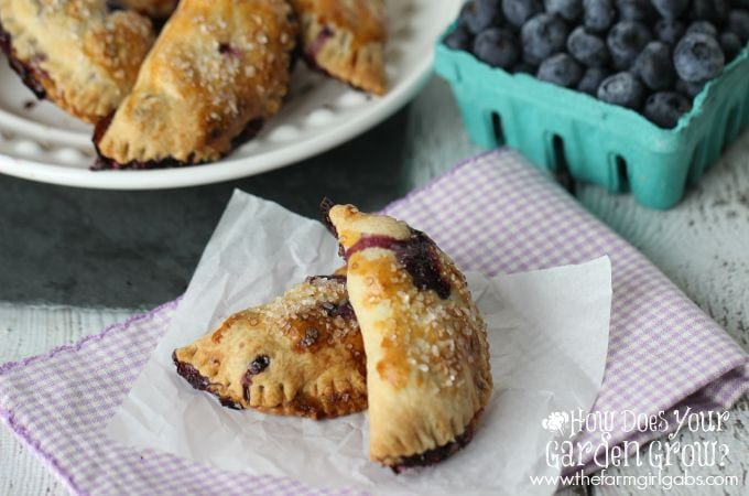 Blueberry Hand Pies are a delicious mini-pie dessert made with fresh blueberries. This easy recipe is the perfect snack. | www.thefarmgirlgabs.com