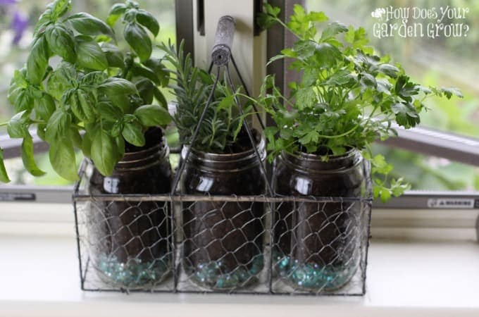 Mason Jar Herb Garden - Feature 1
