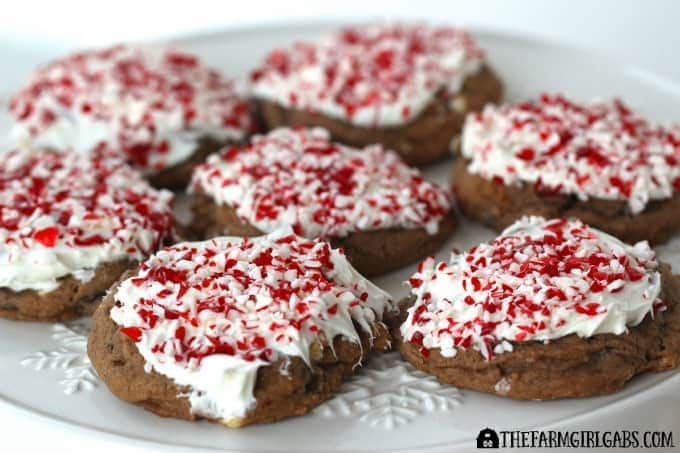 Peppermint Hot Chocolate Cookies - Feature 1