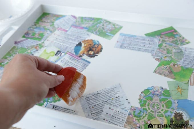 Disney Parks Guidemap Serving Tray - Step2