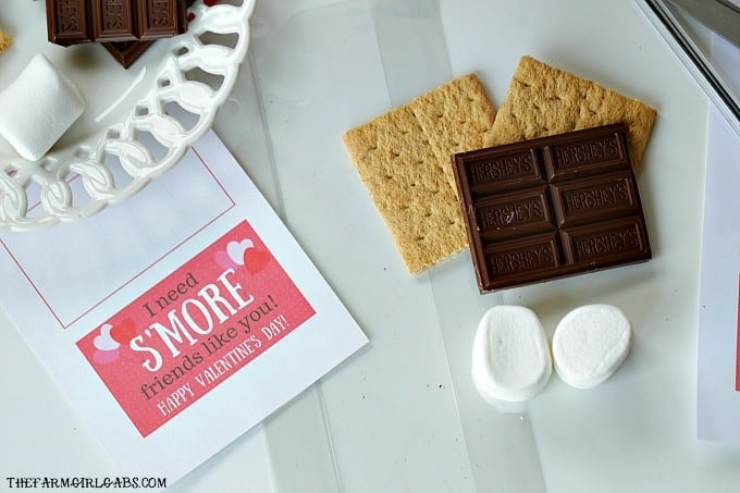 Share some campfire sweetness with your friends and create these cute S'Mores Valentine Treat Bags.