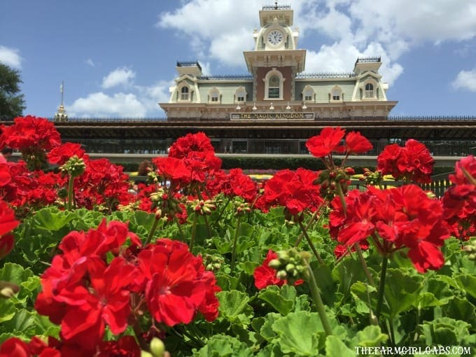 How to Avoid the Crowds At Walt Disney World