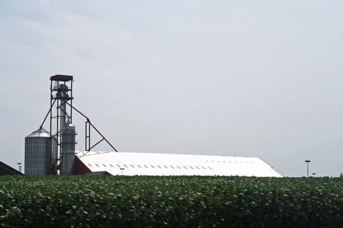 My afternoon at Spirit Farms in Illinois | Honey and Birch