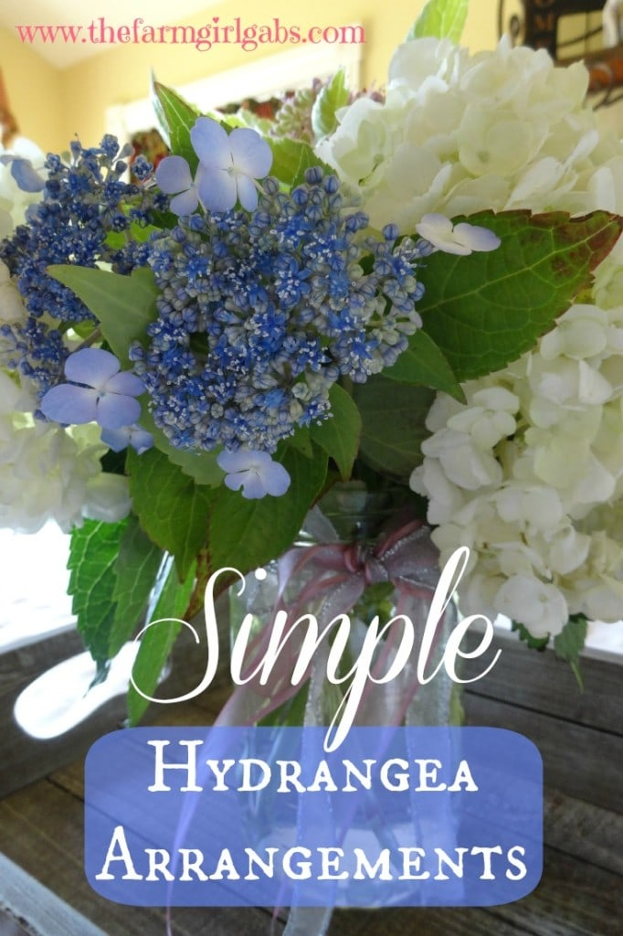 Hydrange Pinterest
