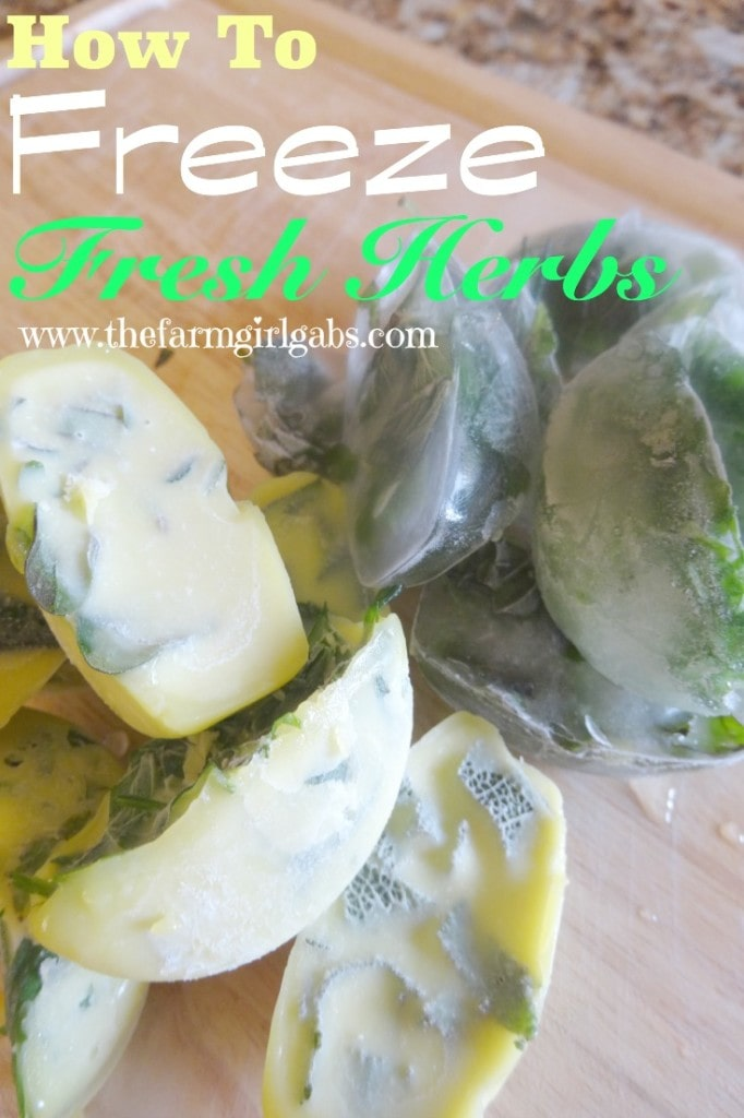 How To Freeze Fresh Herbs from How Does Your Garden Grow? ~ www.thefarmgirlgabs.com