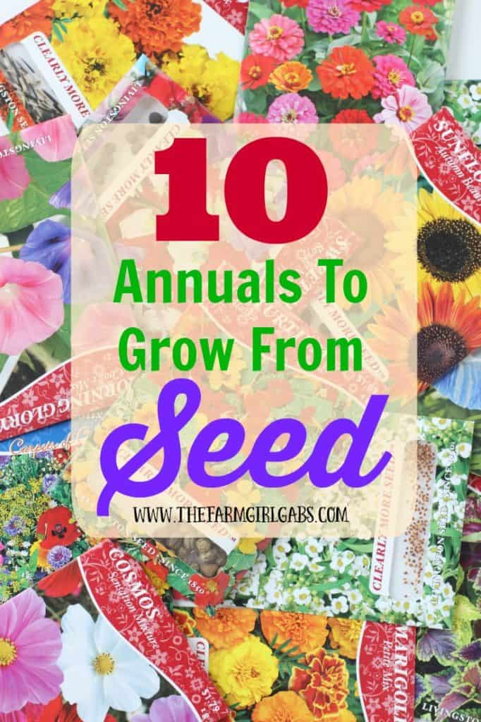 10 Annuals To Grow From Seed from www.thefarmgirlgabs.com