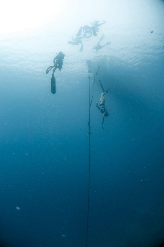 เรียน freediving กลั้นหายใจ
