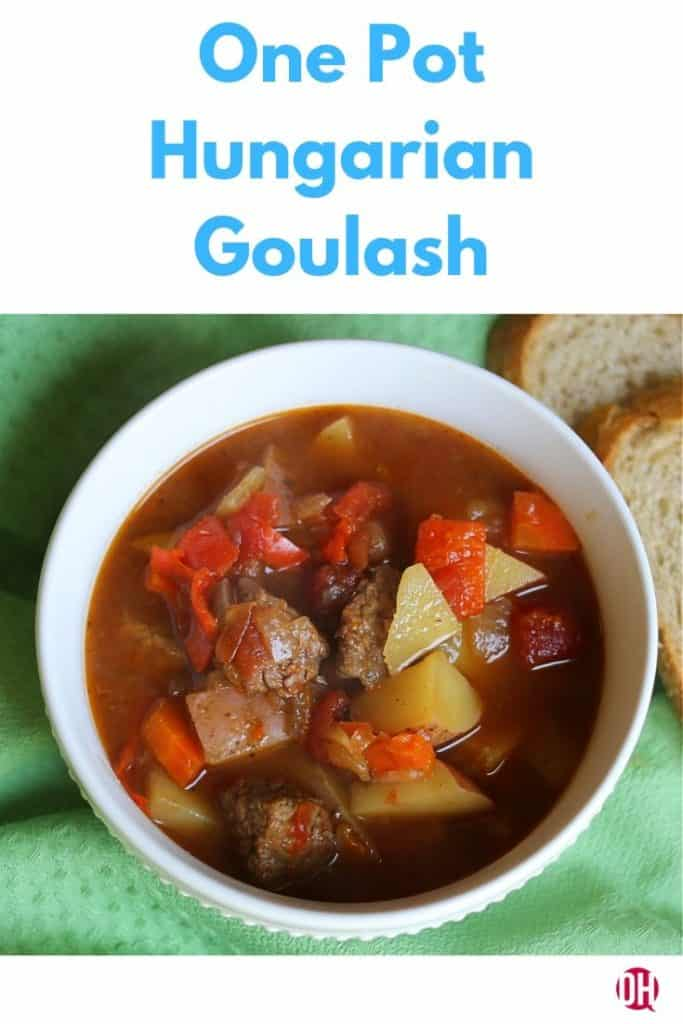 bowl of hungarian goulash