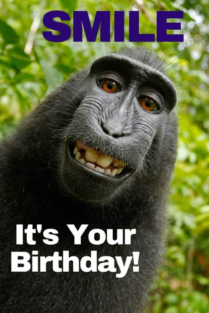 Funny Happy Birthday Memes, Images To Share With Friends