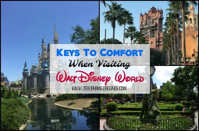 Keys To Comfort When Visiting Walt Disney World