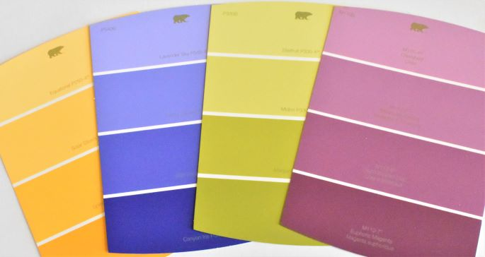 double complimentary scheme paint chips