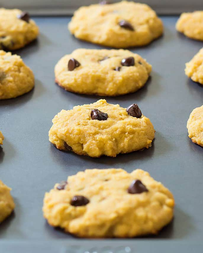 Cookie sheet full of coconut flour chocolate chip cookies