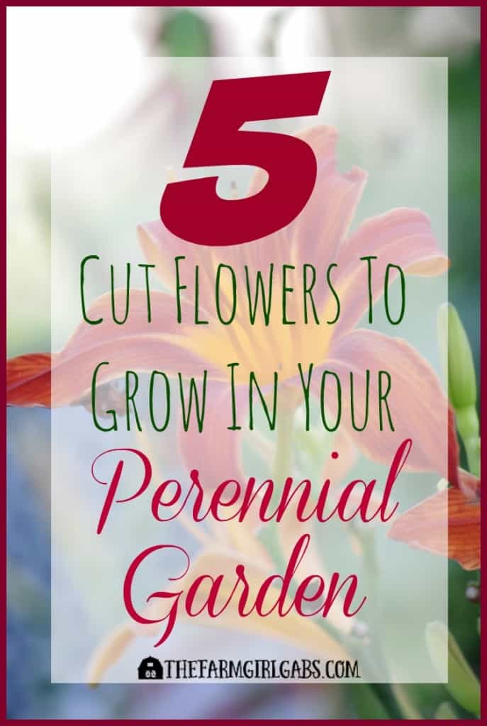 5 Cut Flowers To Grow In Your Perennial Garden