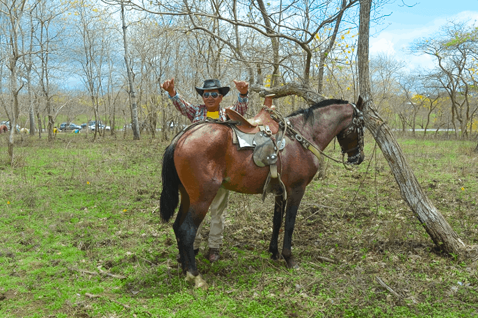 Rent a horse to explore the natural Guayacanes Forest