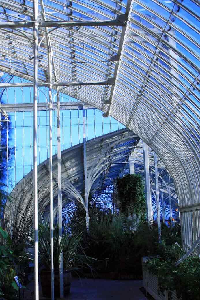 photography portfolio tips - botanic gardens dublin