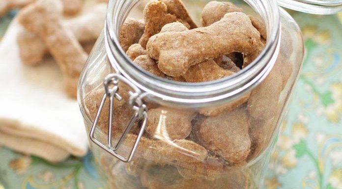 Easy to make, all natural Homemade Dog Treats - healthy, tasty and ones your