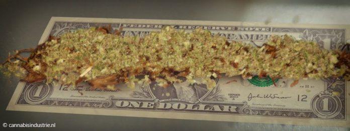 legale cannabis verkoop rabobank coffeeshop coffeeshophouder pinbetaling contant geld