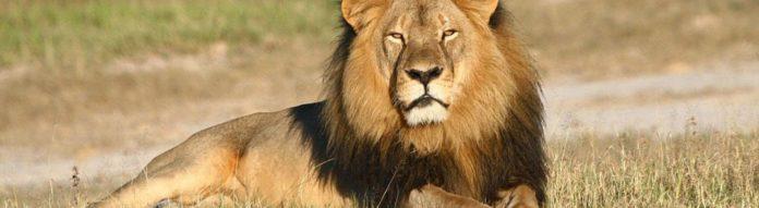 Empresas na malha fina devem 1 Bilhão ao leão