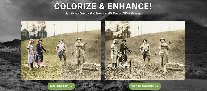 image-colorizer
