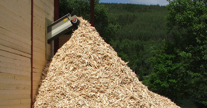 Band conveyor for wood waste recycling with shredded wood with green forest background