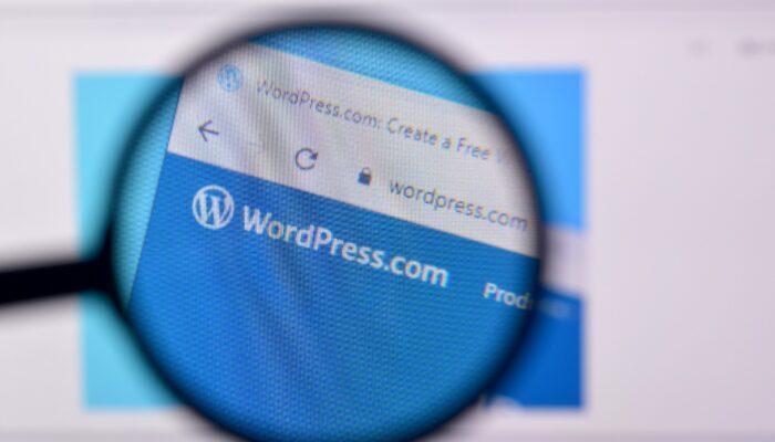 Wordpress udvikling
