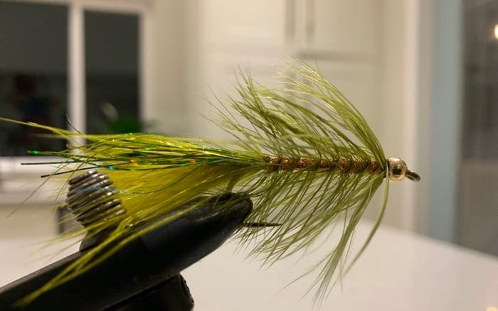 bull trout fly