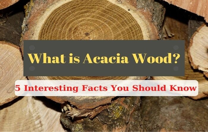 what is acacia wood
