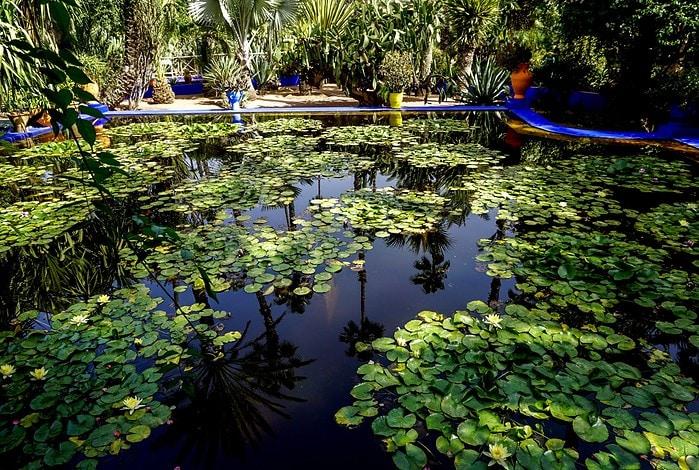 Majorelle Garden, Marrakesh, Morocco - Experiencing the Globe