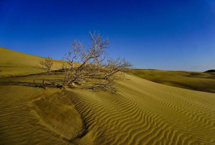 Varzaneh desert, Isfahan province, Iran – Experiencing the Globe