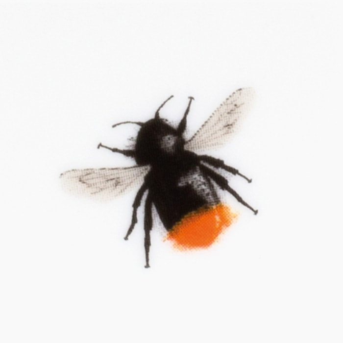 red tailed bumblebee print