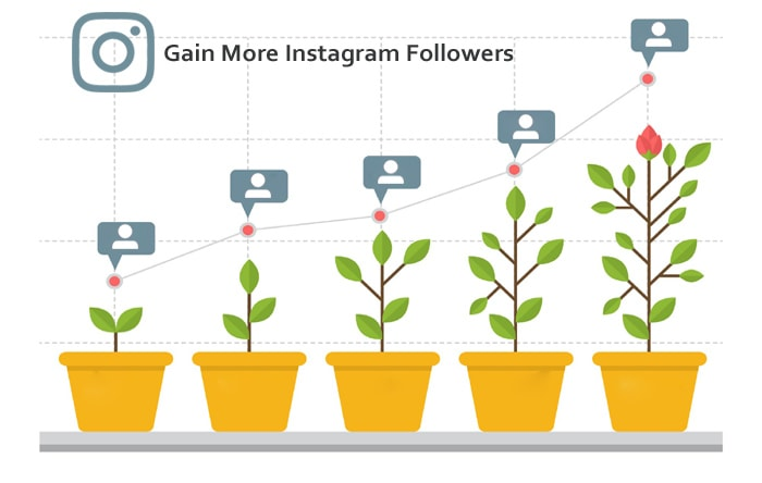 Gain More Instagram Followers