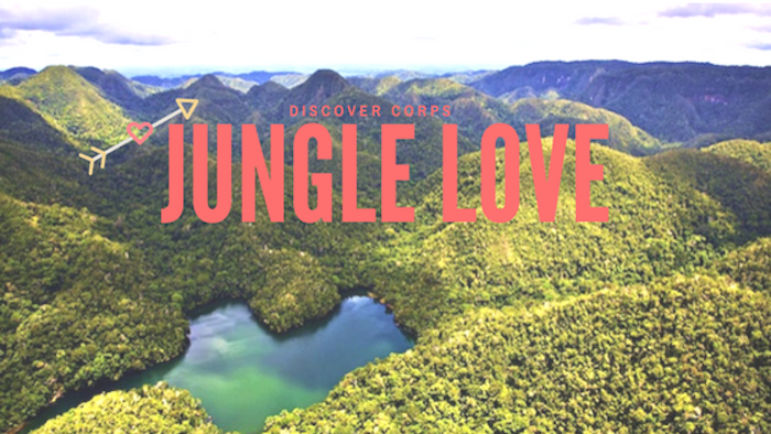 Jungle Love: Why Rainforests Are Important