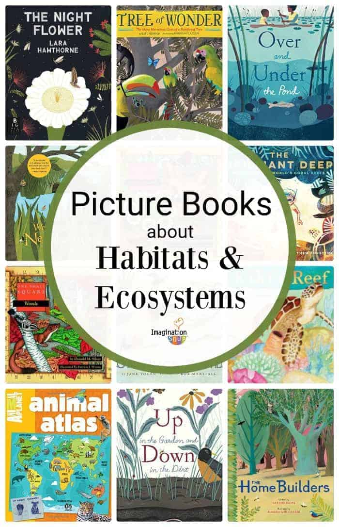 picture books about habitats and ecosystems
