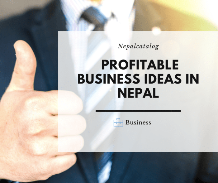 small business Ideas in Nepal